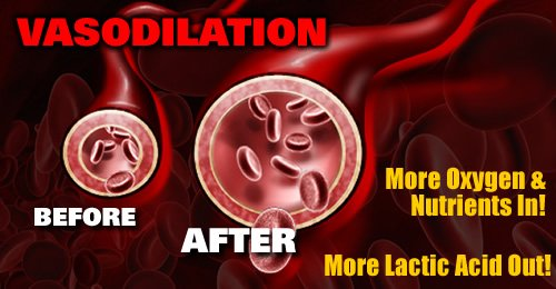 What is VASODILATION and how is it beneficial to athletes?